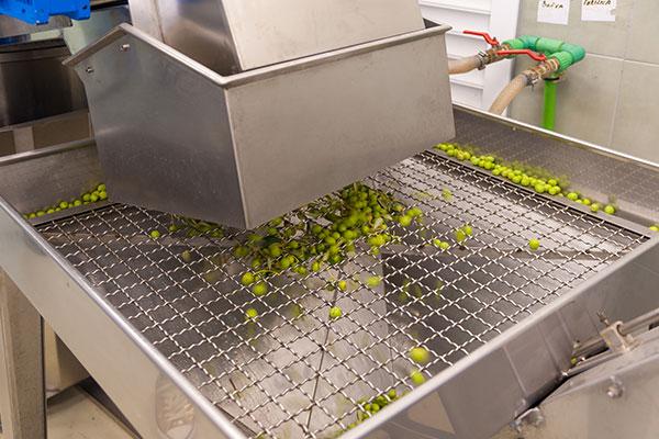 Postupak prerade započinje čišćenjem i pranjem ploda